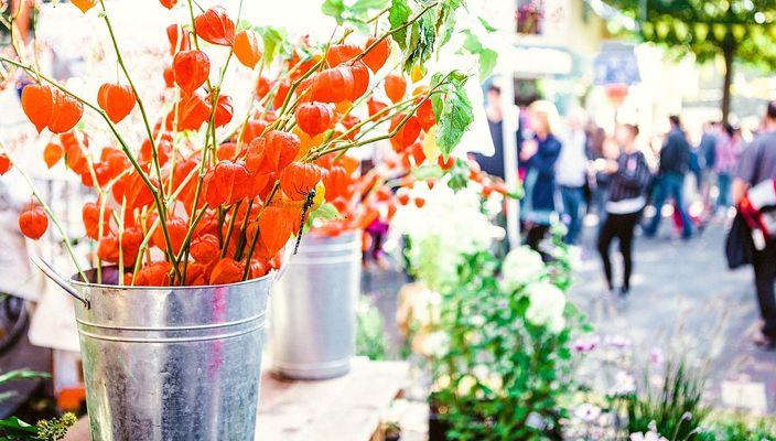 Duurzame bloemetjes