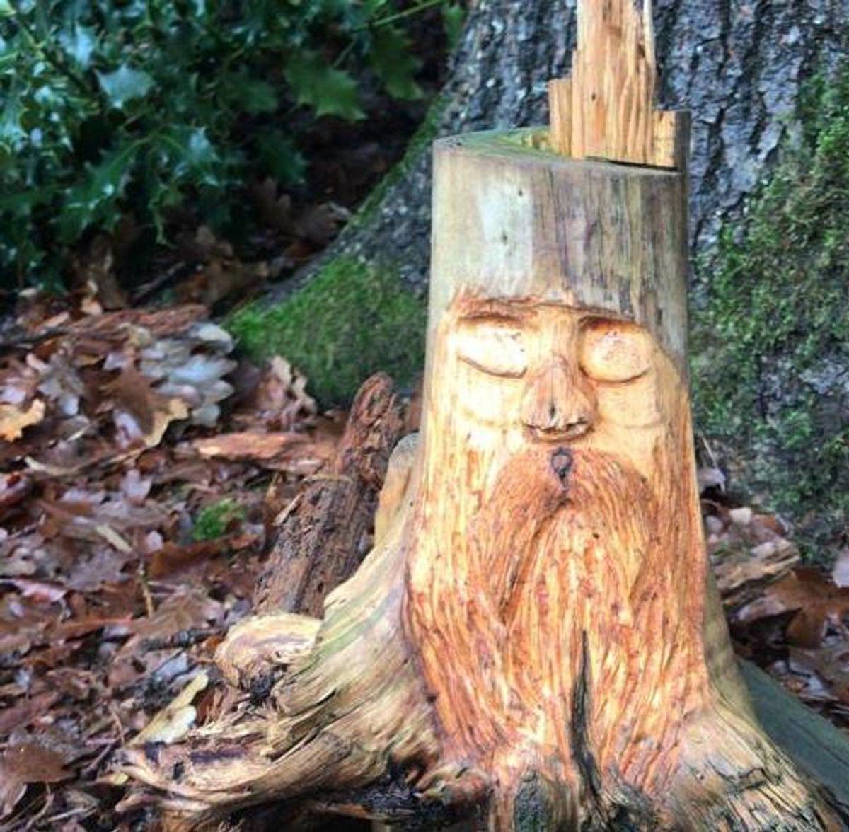 Een spirit in het bos